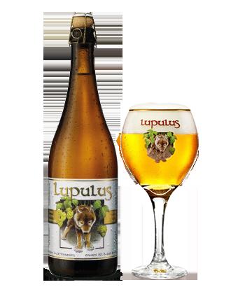 Lupulus Blond Image